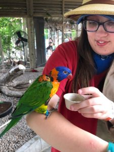 Sensory Tips for Zoo Visits